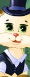 Cuddely Kitten