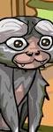 Furry Finger Monkey