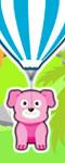 Pets Air Balloon Ride