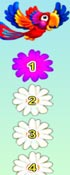 Flowers For Party