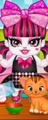 Monster High Draculaura N Frankie Babies