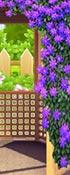 Princesses Garden Contest